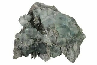 Fluorite & Quartz - Fossils For Sale - #161787
