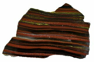 "Buy 6.8"" Polished Tiger Iron ""Stromatolite"" Slab - 3.02 Billion Years - #162088"