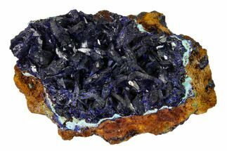 "Buy 2.6"" Sparkling Azurite Crystals on Chrysocolla - Laos - #162577"