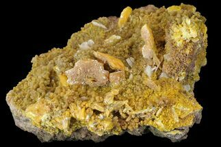 "Buy 2.95"" Wulfenite & Barite On Mimetite - Mexico - #163156"