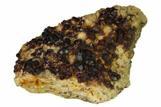 Garnet var. Spessartine & Feldspar - Fossils For Sale - #163557