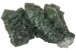 "3.1"" Green, Hedenbergite Included Quartz - Mongolia For Sale, #163985"