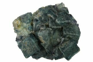 Fluorite & Quartz - Fossils For Sale - #164031