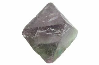 Fluorite - Fossils For Sale - #164559