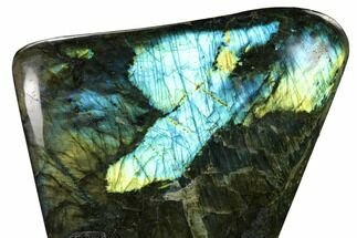 "Buy 7.7"" Flashy, Polished Labradorite Free Form - Madagascar - #154171"