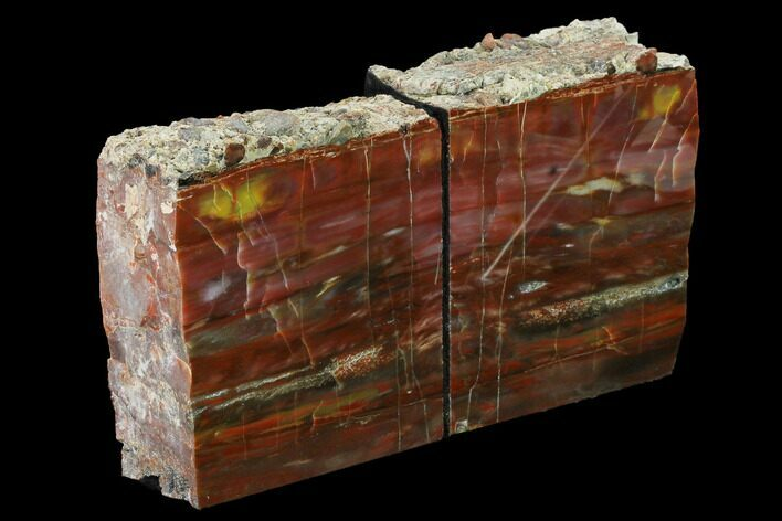 "5"" Tall, Arizona Petrified Wood Bookends - Red, Yellow & Purple"