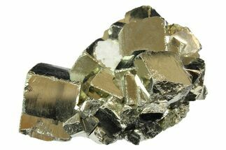 Pyrite - Fossils For Sale - #167694