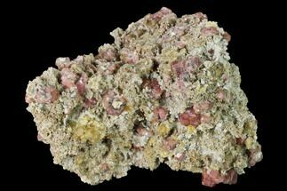"Buy 3.6"" Raspberry, Grossular Garnets and Vesuvianite - Mexico - #168313"