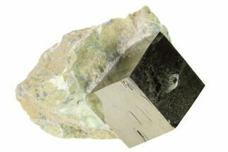 Pyrite - Fossils For Sale - #168522