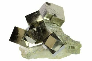 Buy Natural Pyrite Cube Cluster in Rock - Navajun, Spain - #168550