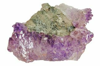 "Buy 3.8"" Amethyst Crystal Cluster with Hematite Inclusions - India - #168781"