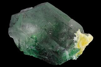 "Buy 4.1"" Large Green Fluorite Crystals over Schorl - Namibia - #169369"