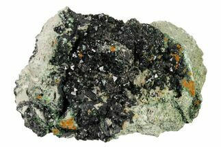 "Buy 3.3"" Deep-Green Libethenite Crystal Cluster - #169831"