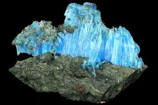 Chalcanthite - Fossils For Sale - #176454