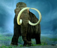 State-fossil-woolly-mammoth