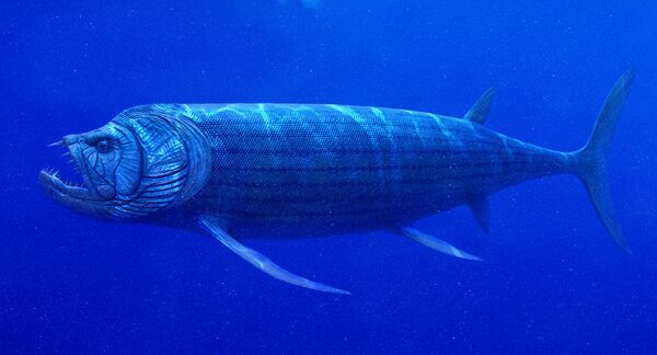 An artists rendering of Xiphactinus.  Creative Commons License . By Julian Johnson