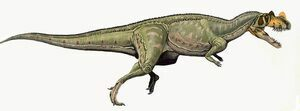 Artists reconstruction of Ceratosaurus.  By DiBgd