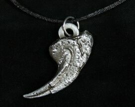 Allosaurus Claw Replica Necklace/Pendant