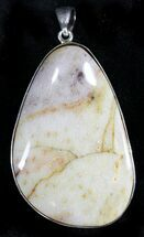 Buy Louisiana Petrified Palmwood Pendant - #24748