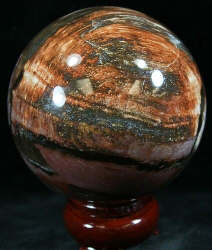 "3.2"" Colorful Petrified Wood Sphere"