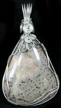 Silver Wire Wrapped Dinosaur Bone Pendant - Colorado For Sale, #26991