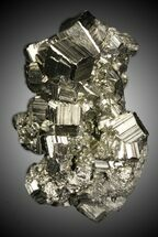 Pyrite - Fossils For Sale - #31104