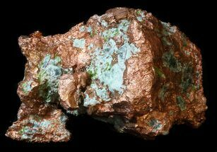 Copper - Fossils For Sale - #34917