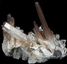 Quartz Crystals For Sale - FossilEra.com Quartz Crystals For Sale
