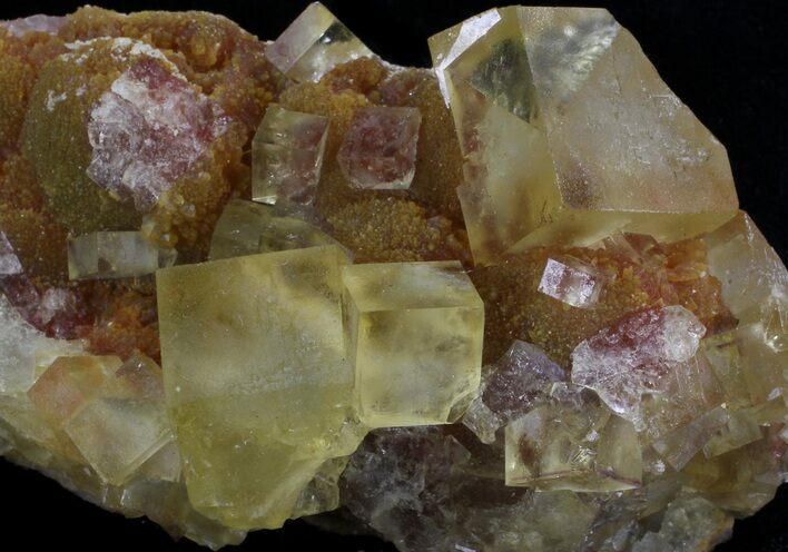"3.5"" Lustrous, Yellow Cubic Fluorite Crystals - Morocco"