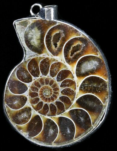 Fossil Ammonite Pendant - 110 Million Years Old
