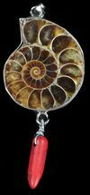 Buy Fossil Ammonite Pendant - 110 Million Years Old - #38152
