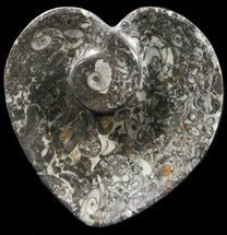 "4.5"" Heart Shaped Fossil Goniatite Dish For Sale, #39368"