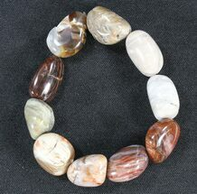Buy Polished Oregon Petrified Wood Bracelet - #40843
