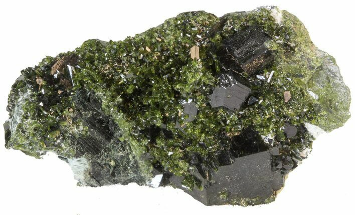 "Lustrous 2.4"" Epidote Crystal Cluster with Actinolite - Pakistan"