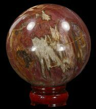 "3.6"" Colorful Petrified Wood Sphere For Sale, #41957"