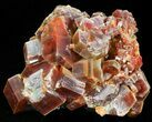 "1.6"" Large Red Vanadinite Crystals on Matrix - Morocco - #42177-1"