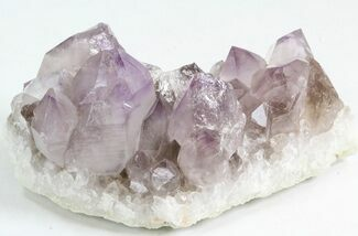 "3.8"" Amethyst Crystal Cluster - Diamond Hill, SC For Sale, #44804"
