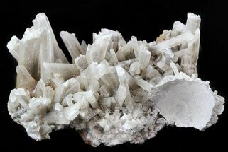 Gypsum var. Selenite - Fossils For Sale - #45195