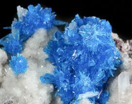 Vibrant Blue Cavansite on Stilbite - India For Sale, #45872