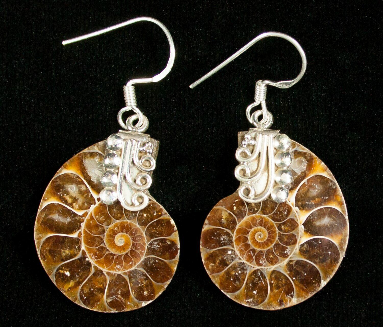 de91ac52b Stylish Ammonite Earrings - Sterling Silver For Sale (#4520) - FossilEra.com