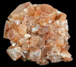 Aragonite - Fossils For Sale - #49317
