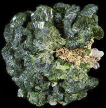 "Buy 2.3"" Lustrous, Epidote Crystal Cluster - Morocco - #49414"