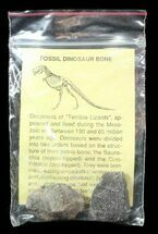 Two Fossil Dinosaur Bone Pieces In Bag - Jurassic For Sale, #51632