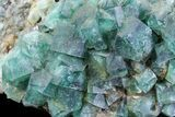 "8.8"" Fluorite & Galena Plate - Rogerley Mine (Special Price) - #62069-4"