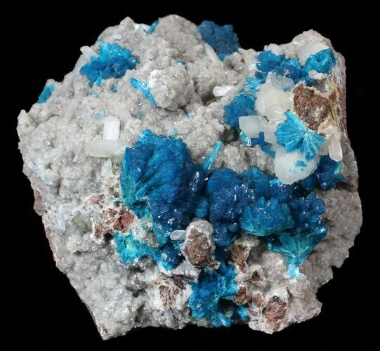 "3.1"" Exceptional Cavansite on Stilbite - India"