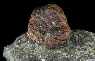 "Big, 1.9"" Almandine Garnet In Rock - Broken Hill, Australia  For Sale, #63308"