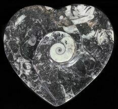 "Buy 4.5"" Heart Shaped Fossil Goniatite Dish - #61285"