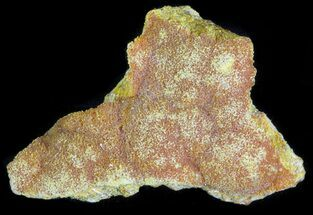 Orpiment - Fossils For Sale - #63768