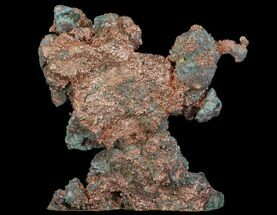 Copper - Fossils For Sale - #64761