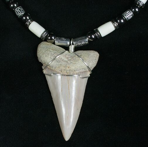 Fossil Mako Tooth Necklace - Bakersfield, CA